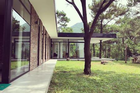 Sapavilion