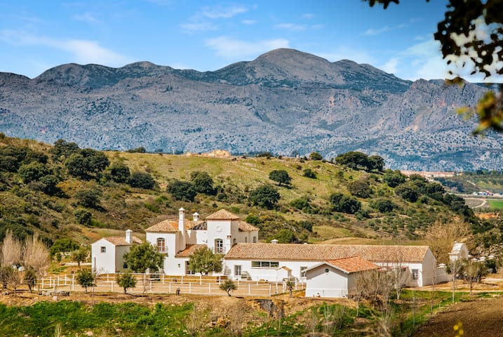 Rasero Retreat: 117838 - Ronda - Villa