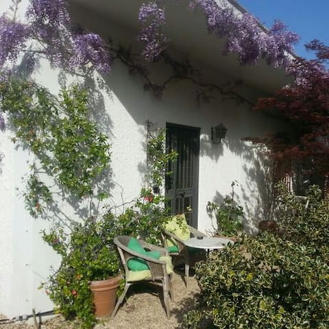 Delightful cottage near Metro C - Rome - Huis