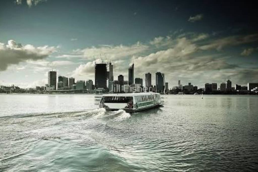 Take the ferry from the Jetty from the South Perth foreshore to Elizabeth Quay /Perth City