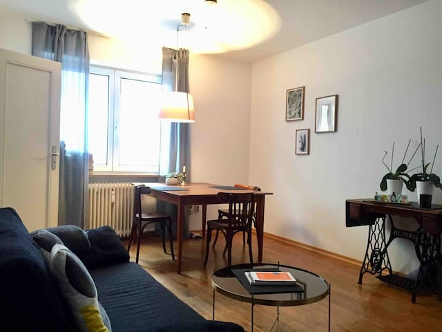 Lovely apartment in the city center