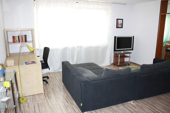 Moderne zentrale 1-Zimmer Wohnung in Südstadt