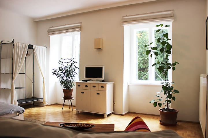 Quiet garden flat in a historic house - Vídeň - Byt