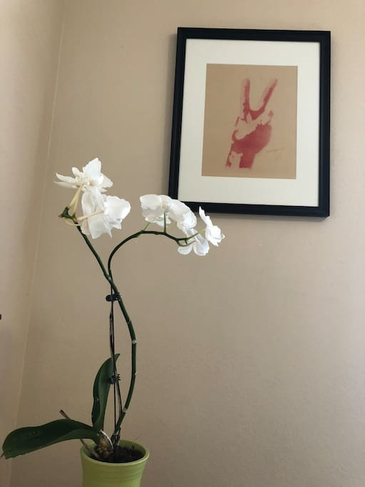 Original art and flowering orchid
