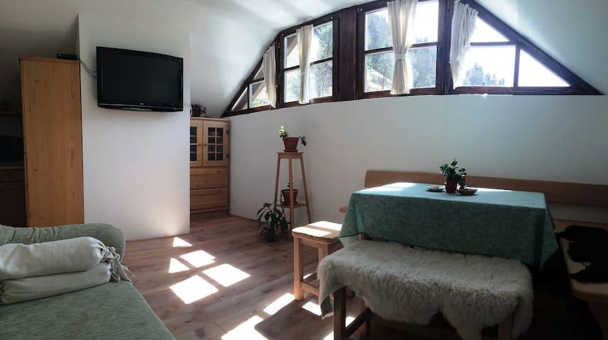 Apartments&Wellness Logarska dolina-apartment Veža