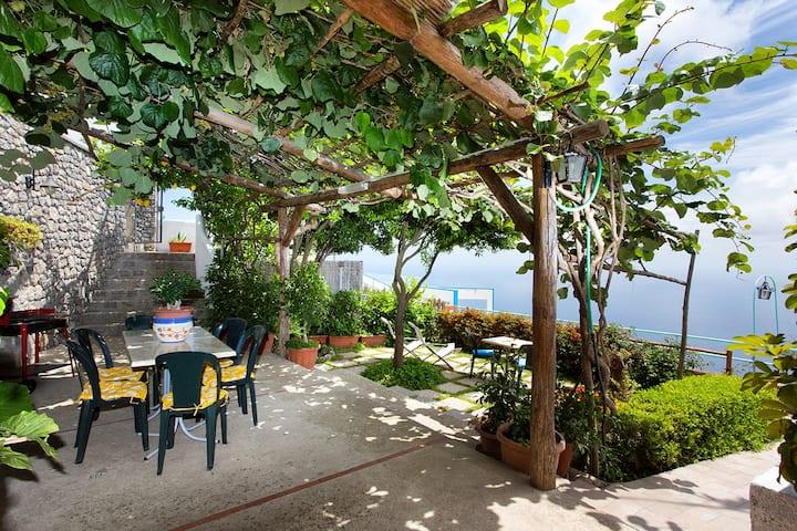 Apartament with garden
