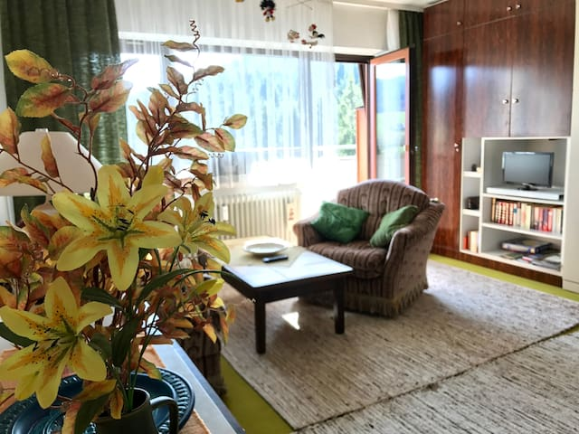 Appartement direkt am Waldrand - Baiersbronn - Apartment