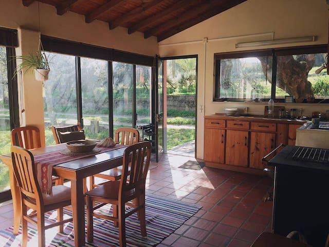Casa no campo - Torres Novas - 一軒家
