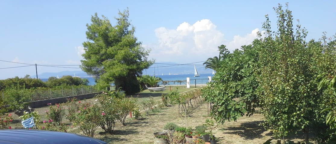 Beautiful Seafront house in North Euboia - Oreoi - Villa