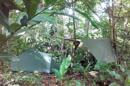Natural Campsite at our Kalinago Home - Marigot