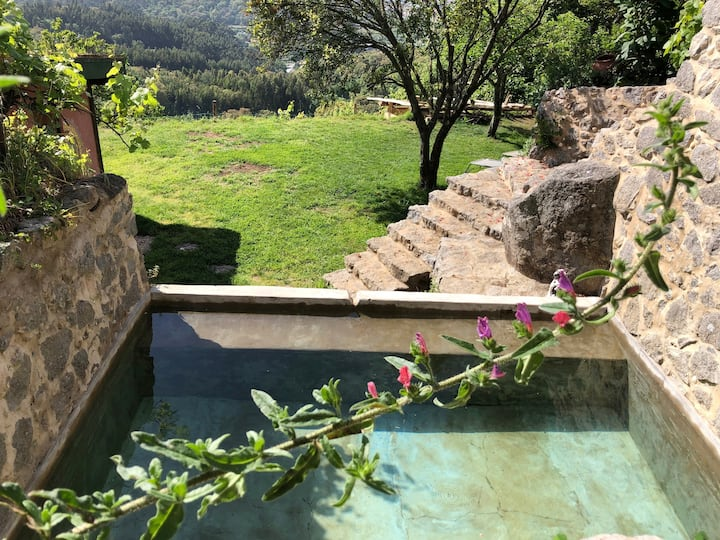 Nature. Plunge pool & Sauna. Breakfast