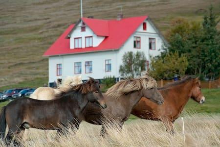 Guesthouse Geitaskarð -  Sveitarfélagið Blönduós