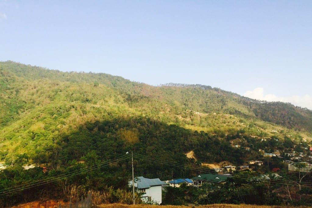 Scenic Maracas Valley View