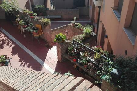 MINI FLAT A 2 PASSI DAL CENTRo DI URBINO!