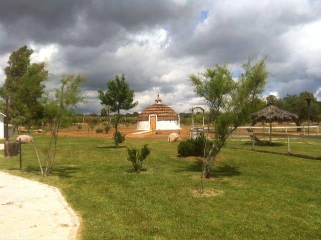 Casa-Iglú en Doñana, Ardea Purpurea - Villamanrique de la Condesa - Iglú