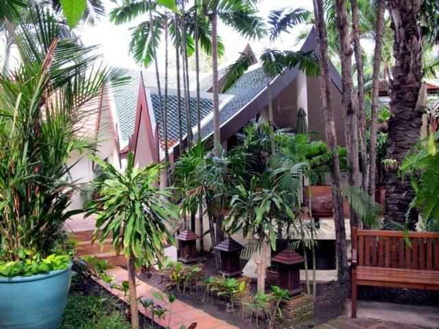 1 bedroom bungalow with living and terrace (164)