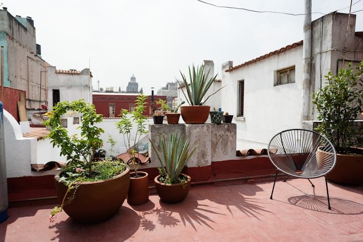 Beautiful rooftop Room, Bath & Garden near Zócalo