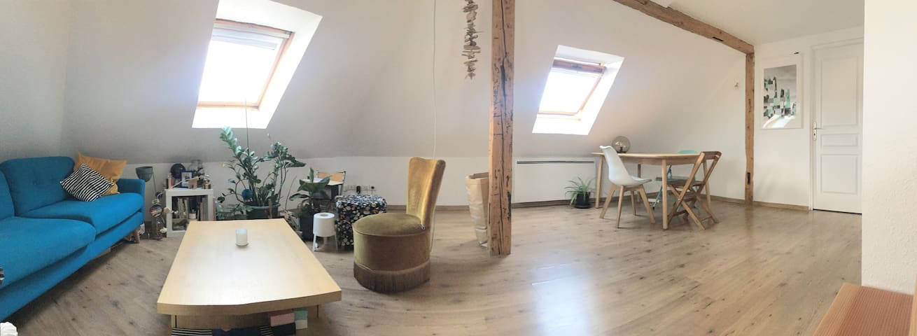 Cosy Apartment - 10 mn from city center
