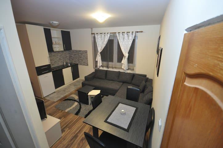 Apartmani Borko 1 - Zlatibor - Apartament