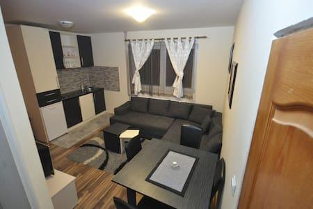 Apartmani Borko 1 - Zlatibor