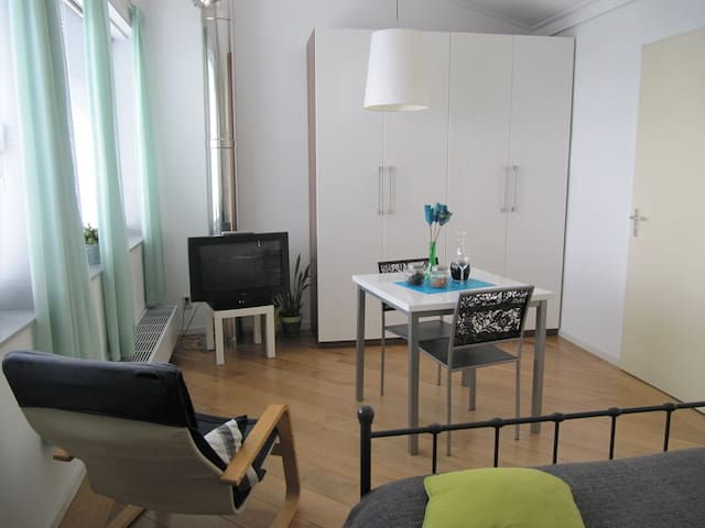 Spacious room with ensuite bathroom - Eindhoven - Casa