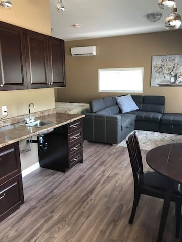 Open concept kitchenette , sitting room with pop up couch and queen bed.