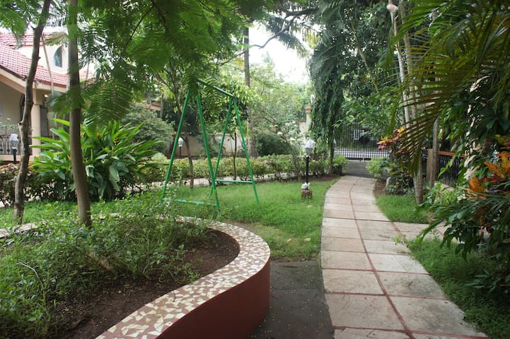 Garden with the  pathway