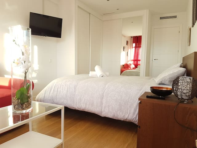 Beautiful exclusive apartment in madrid city - Madrid