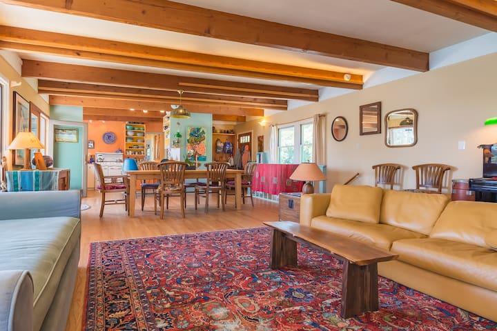 Huge sunlit living room