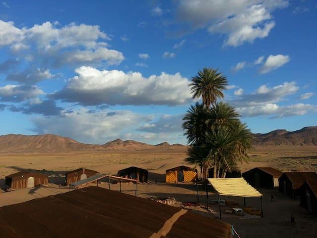 Zagora Desert Camp - Zagora - Tent