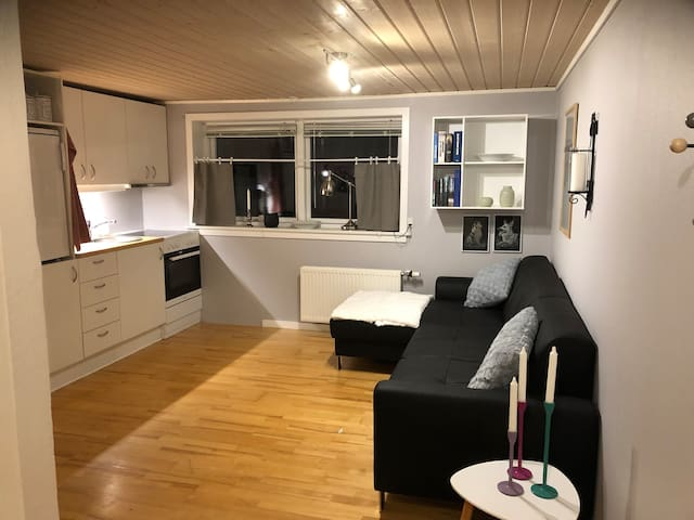Cozy apartment in the middel of Tórshavn