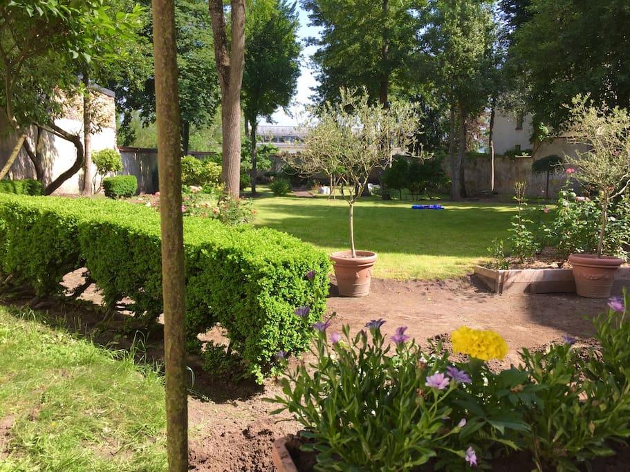 Cour avec jardin ☀️