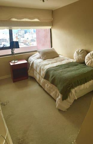 Pieza con baño privado en cómodo departamento - Temuco - Pis