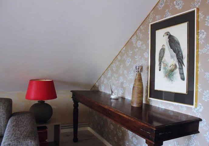 Brasov dream loft