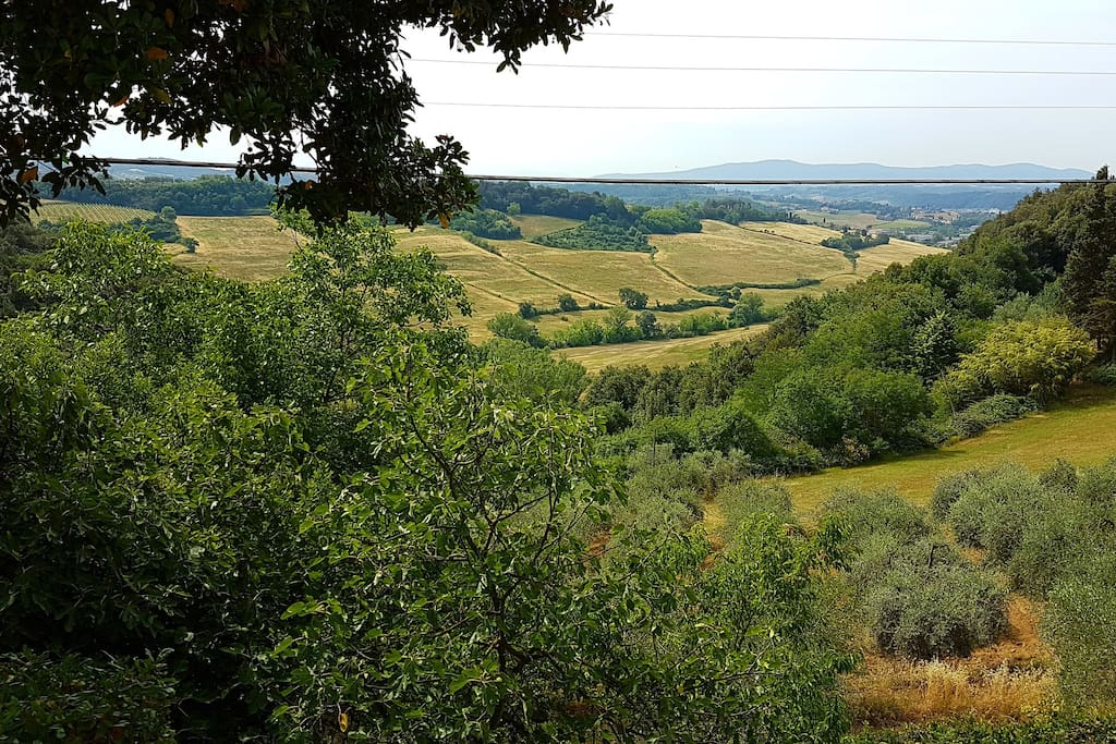 View on the Tuscan hills Vista sulle colline Toscane