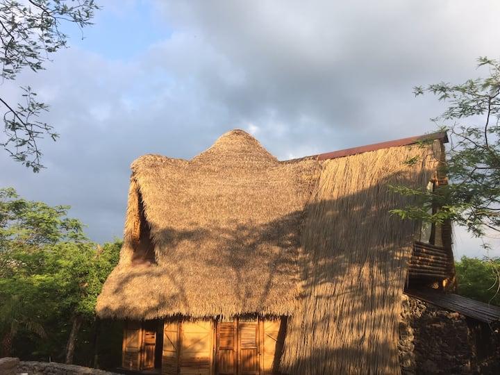 Santuario de pavo reales. Casa Nido De Pájaro