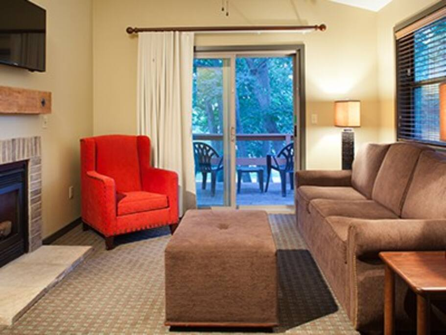 Livingroom w/ sofabed