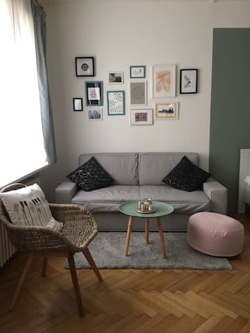 Comfy sofa in living room area