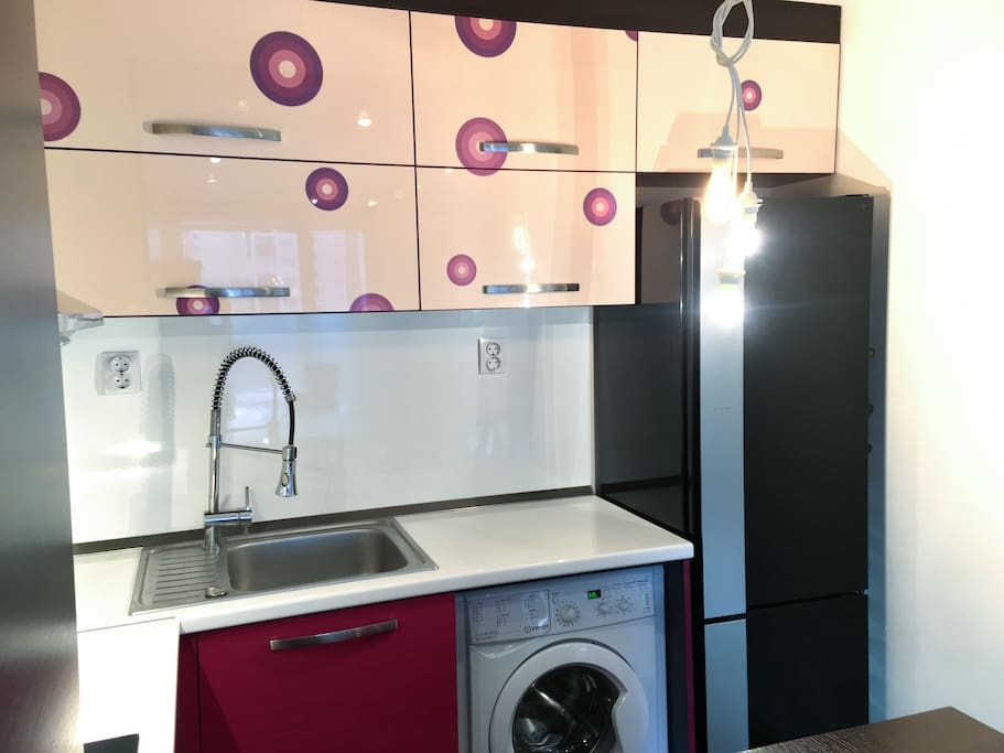 Fully equipped kitchenette with high end appliances- a dishwasher, oven, ceramic plates, washing machine, juicers, refrigerator, kitchen equipment.