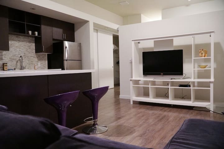 HUGE luxury loft across from Convention Center!