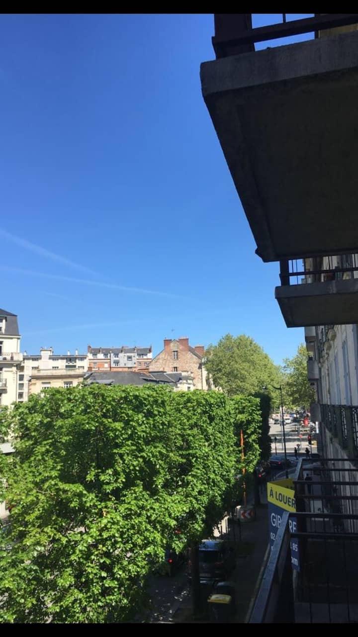 Rennes au cœur de la ville