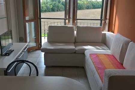 Tra Ferrara e Bologna, relax.... - Poggio Renatico