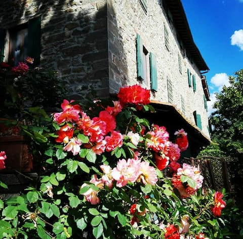 Podere I Rovai-apt IL RIFUGIO-in the heart Tuscany