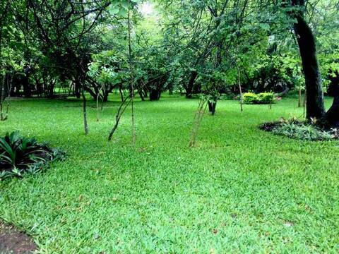 Manukah Zambiana -  Tranquillity. Redefined.