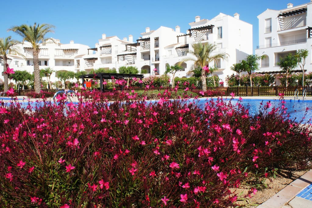 Two Bedroom Apartment beautifully furnished on La Torre Golf Resort