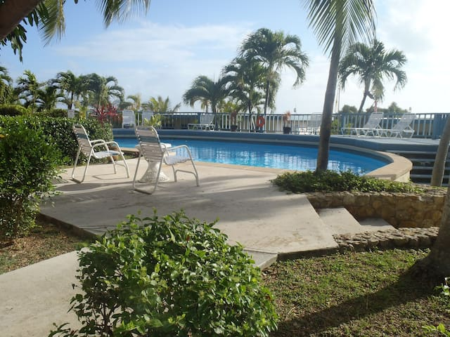 Inter-Ocean Views - Christiansted - Apartamento