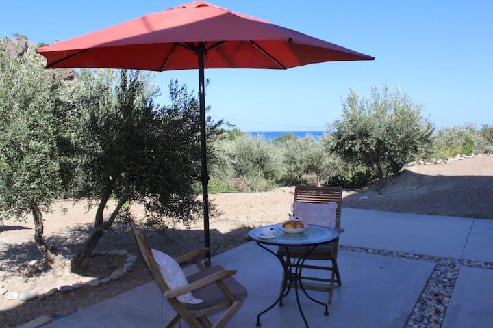 Ferienwohnung direkt am Strand - Agia Fotia - Leilighet