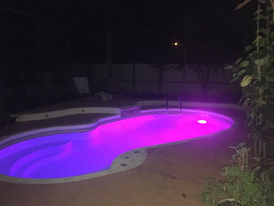 Private backyard pool with color light.