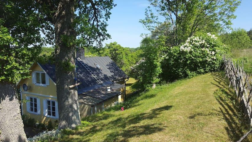 Till trädgården hör en brant slänt. Här uppe är utsikten något bättre, och här uppe är gäststugan belägen.