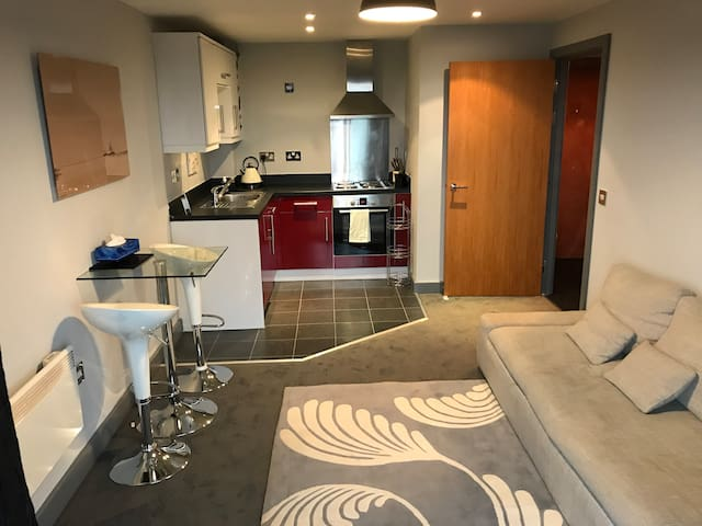Luxury One Bed Birmingham Apartment